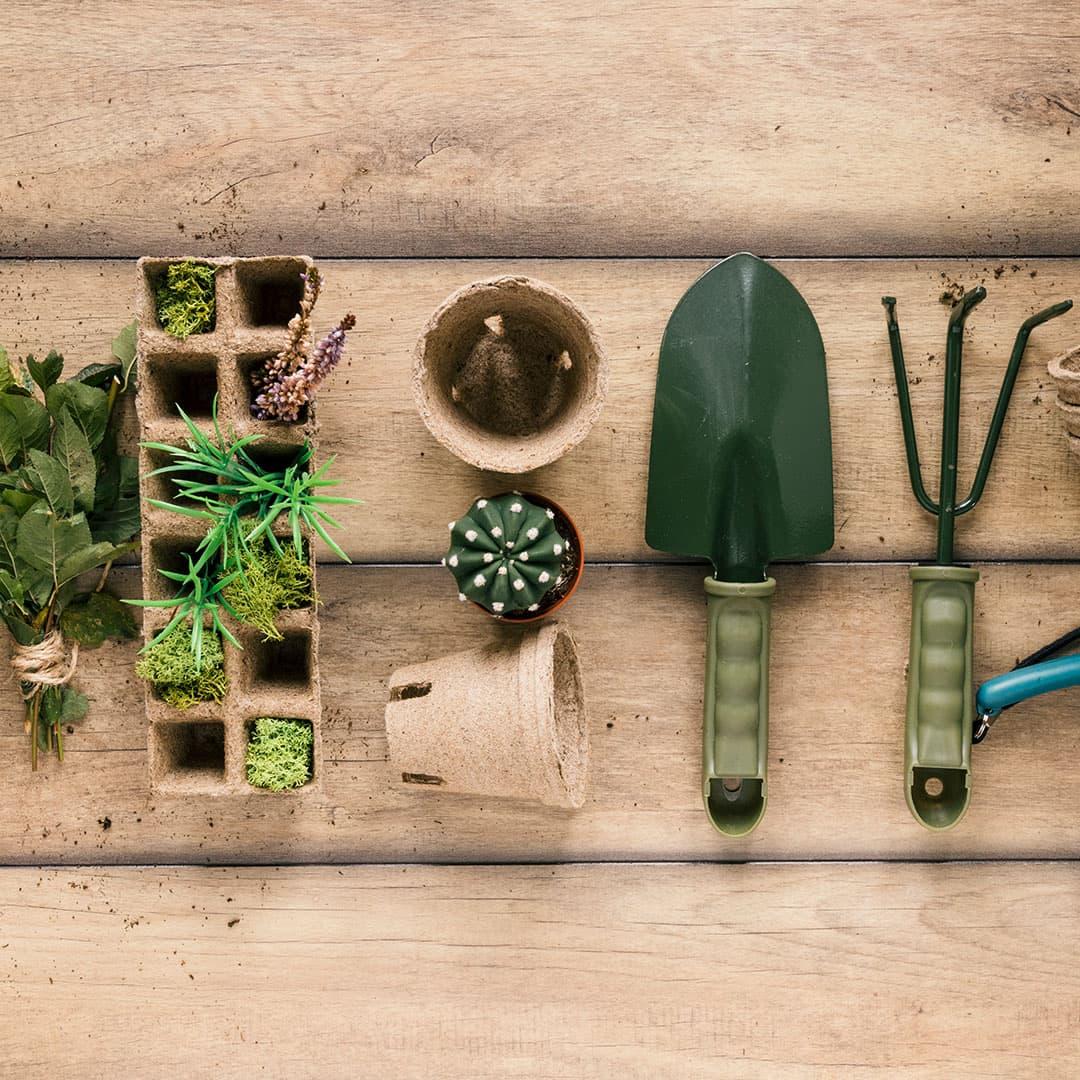 Hogy készítsd fel kerted a tavaszra?